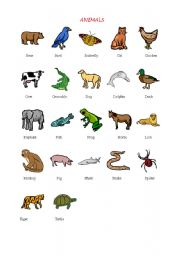 English worksheets: the animals worksheets, page 786