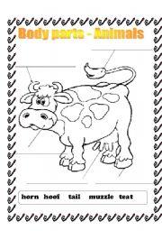 English Worksheets: Body parts - animals
