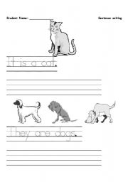 English Worksheets: Beginner sentence writing