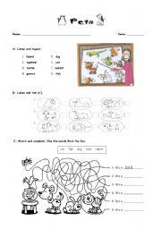 English Worksheet: Animals - pets