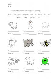 English teaching worksheets: The animals