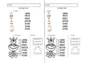 English Worksheets: ENGLISH TEST PARTS OF THE BODY VERY EASY