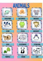 English Worksheets: Sweet Animals