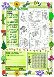 English Worksheet: Elementary Vocabulary Series14 � Trees and Flowers