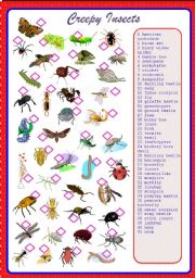 English Worksheet: Creepy Insects Pictionary - Match**fully editable