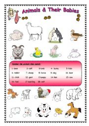 English Worksheets: Animals and their babies + ( BW ) is provided