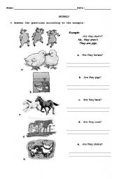English Worksheet: Animals Yes/No Questions