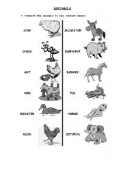 English Worksheets: Animals- Match