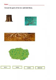English Worksheet: Parts of a tree.Cut out and label