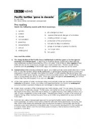 English Worksheets: Pacific Leatherback Turtles
