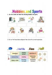 HOBBIES AND SPORTS