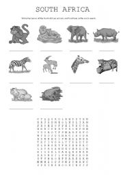 English Worksheet: South African animals