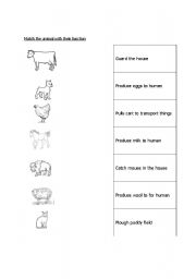 English Worksheets: animal and fucntions