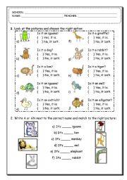 English Worksheets: Animal Exercise