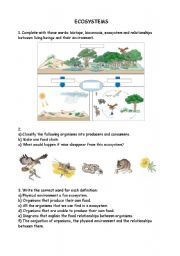 English Worksheet: Ecosystems
