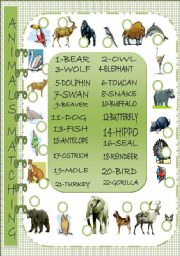 English Worksheets: Animals Matching