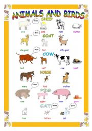 English Worksheets: Animals and Birds (Male & Female)