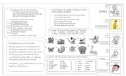 English Worksheet: a test about adverb of frequency, animals, animal sounds, health problems and healthy habbits.
