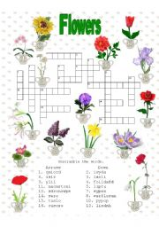 English Worksheet: Crosswords - Flowers