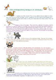 English Worksheets: The Interesting World of Animals