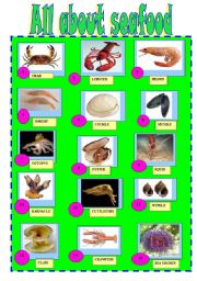 English Worksheets: SEAFOOD