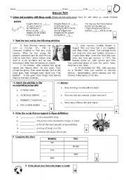 English Worksheets: Test (John Lennon)