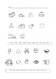 English Worksheets: clothes and parts of body