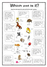 English Worksheets: Which pet is it?