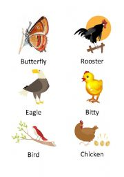 English worksheets: the animals worksheets, page 929
