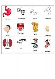 English Worksheets: body bingo 2