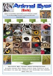 English Worksheet: QUIZ - ANIMAL EYES -  (7 Pages) with an interesting activity with images of EYES of wild animals + Instructions and 5 extra activities to work with them