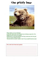 English Worksheets: The grizzly bear