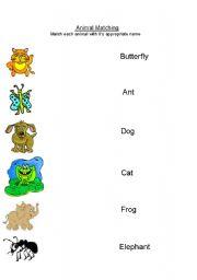 English Worksheets: ABC Animals
