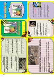 English Worksheet: Rainbow zebra: my minibook n°3