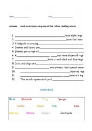 English Worksheets: What kind of animal is it?