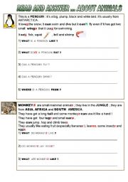 English Worksheet:  READ  AND  ANSWER  ABOUT PENGUINS AND MONKEYS