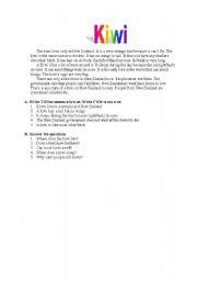 English Worksheets: Kiwi