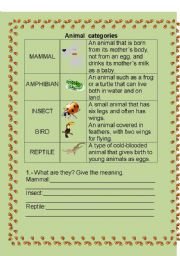 English Worksheets: ANIMAL CATEGORIES