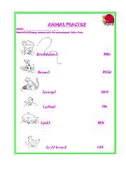 English Worksheets: ANIMAL PRACTICE