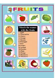 English Worksheets: Matching  picture to the word.