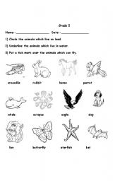 English Worksheet: Animals- habitats