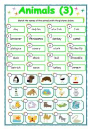 English Worksheets: Animals - matching (3/3)