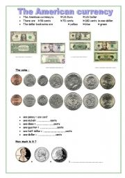 the american currency