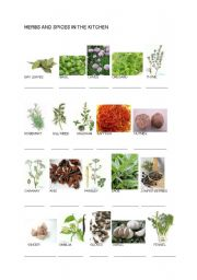 English Worksheet: Herbs and spices in the kitchen