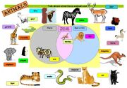 English Worksheets: WHAT ANIMALS EAT