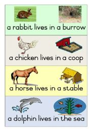 English Worksheet: 19 Animal Homes - Poster 2