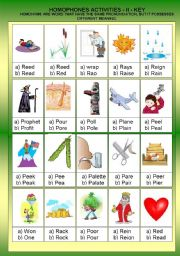 English Worksheet: HOMOPHONOUS II  - ACTIVITIES  +  KEY  ANSWER - FULLY EDITABLE