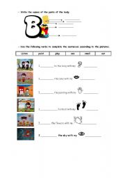 English Worksheets: worksheet about the body