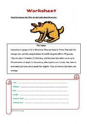 English Worksheets: Hyena the animal
