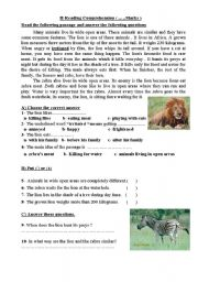 English Worksheets: A reading Comprehension text about Lions and Zebras